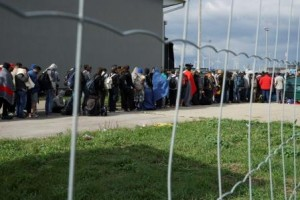accueil des migrants ssvp